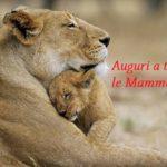 Festa della Mamma: auguri a tutte le mamme!