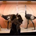 Punto e Virgola Mamma in trasferta: il Museo di Storia Naturale
